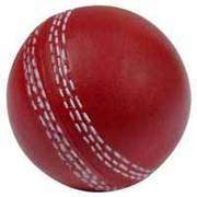 How much does a cricket ball weigh?