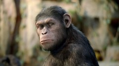 Rise of the Planet of the Apes - 2