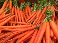 Worth of a Carrot Quiz