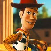 Sheriff Woody Quiz